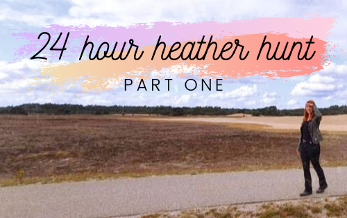 A 24-hour heather hunt – part one.